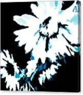 Mums In Abstract Canvas Print