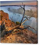 Murray River Dawn Canvas Print