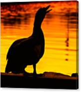Muscovy Sunset Canvas Print