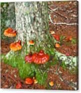 Mushroom Family Canvas Print