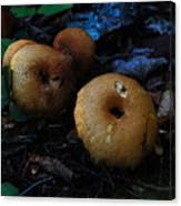 Mushroom Menagerie Canvas Print