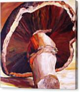 Mushroom Still Life Canvas Print