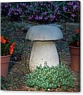 Mushroom Stool Canvas Print