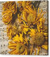 Musical Sunflowers Canvas Print