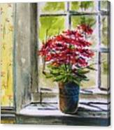 Musing-gerberas At The Window Canvas Print