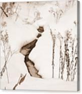 Muskoka Winter 1 Canvas Print