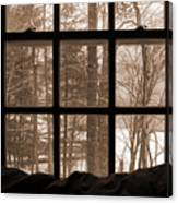 Muskoka Winter 7 Canvas Print