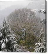 Mussoorie Winter 1 Canvas Print
