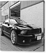 Mustang Alley In Black And White Canvas Print