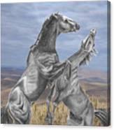 Mustang Battle Canvas Print