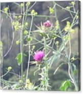Mustard And Thistle Canvas Print