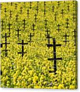 Mustard Color In The Vineyard  Napa Ca. Canvas Print