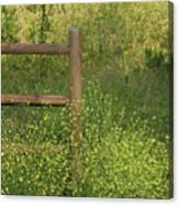Mustard Grass And Fence At Entrance To Peters Canyon Canvas Print