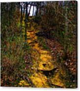 Mustard Hill Canvas Print