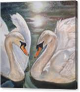 Mute Swans - River Severn Canvas Print