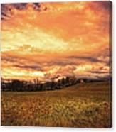 Muted Sunshine Canvas Print