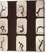Muybridge Locomotion Back Hand Spring Canvas Print