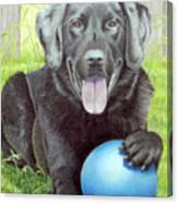 My Big Blue Ball Canvas Print