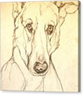 My Boy Joshua Canvas Print