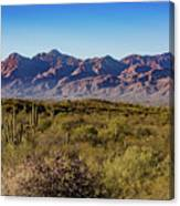 My Catalina Mountains Canvas Print