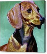 My Daschund Canvas Print