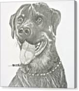 My Dog Kito Canvas Print
