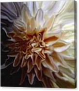 My Exotic Flower Canvas Print