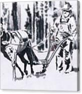 My Favorite Mule Canvas Print