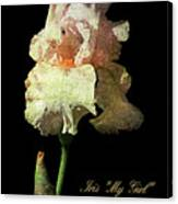 My Girl Iris  Canvas Print