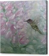 My Hummingbird Canvas Print