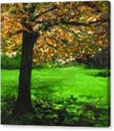 My Love Of Trees I Canvas Print