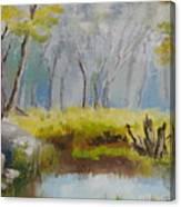 My Pond Canvas Print