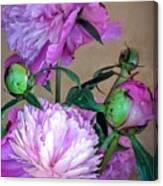 My Spring Garden Peony Canvas Print