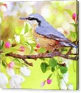 My Summer Bird Canvas Print