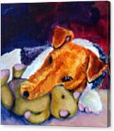 My Teddy - Wire Hair Fox Terrier Canvas Print