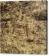 My Textured Stones D Canvas Print