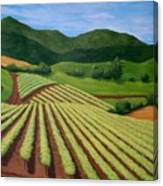 My Vineyard Canvas Print