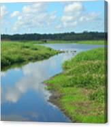 Myakka River Reflections Canvas Print