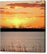 Myakka Sunset Canvas Print