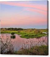Myakka Wetlands By H H Photography Of Florida Canvas Print
