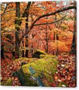 Mystery Of Autumn Canvas Print