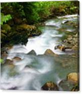 Mystic Creek Canvas Print