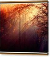 Mystic Forest At Dawn L B With Alternative Decorative Ornate Printed Frame Canvas Print