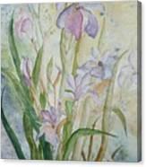 Mystic Iris Canvas Print