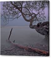 Mystic Lake Canvas Print
