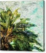 Mystical Palm Canvas Print