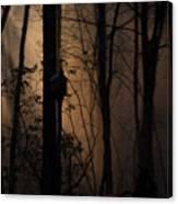Mystical Woods Canvas Print