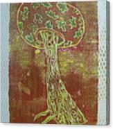 Myxomycetes 3 Canvas Print