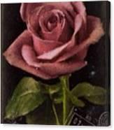N150628 Canvas Print