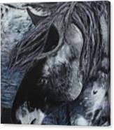 Nahokey Canvas Print